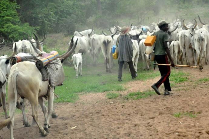 Christians may avenge herdsmen attacks – CAN