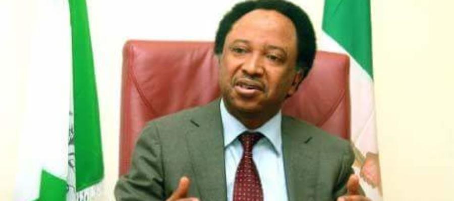 Don't use force against Biafran agitators –Shehu Sani