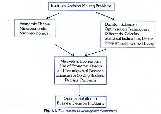 Decision-Making Theory: Definition, Nature and Theories