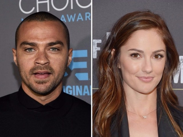 Jesse Williams and Minka Kelly's Date Night Photos