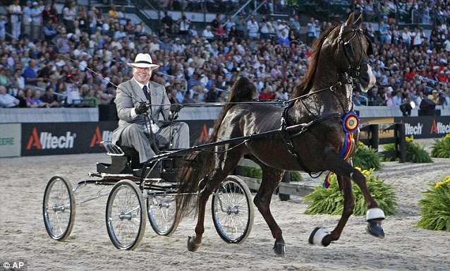 William Shatner Flipped Over in Horse and Buggy Show, But Not Injured