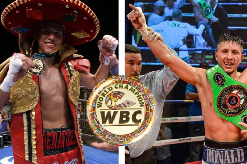 Benavidez, Gavril to fight for vacant world title