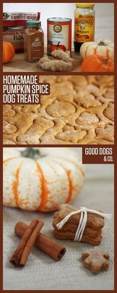 Pumpkin Spice Season Is Already Here! 11 Ways You Can Celebrate Early