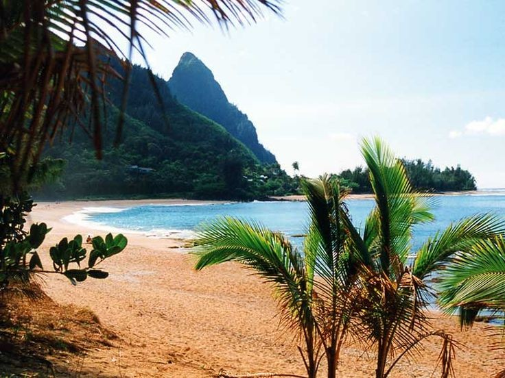 The Island of Kauai is the Perfect Spot for This Chic, Tropical Celebration