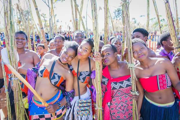 Photos of scantily-clad Zulu virgins at the ongoing annual Reed Dance (+18)