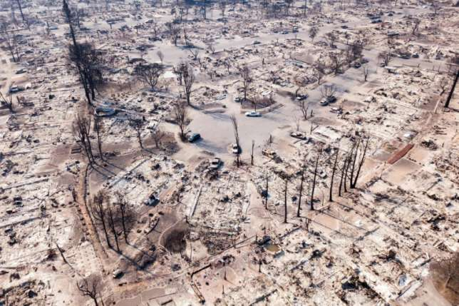 In California Cadaver dogs join grim search for bodies as fires rage Body recovery teams with cadaver dogs were searching Thursday for victims of California's wildfires as reinforcements arrived to help exhausted firefighters battle some of the worst infernos the state has ever seen.