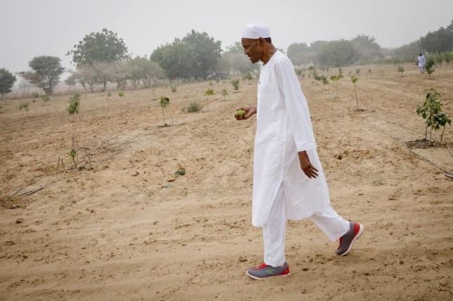 Buhari President visits his farm in Daura ahead of France trip (Photos)