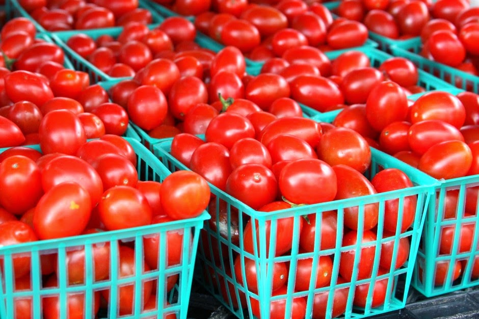 How To Start Tomato Farming In Nigeria (Detail Report)