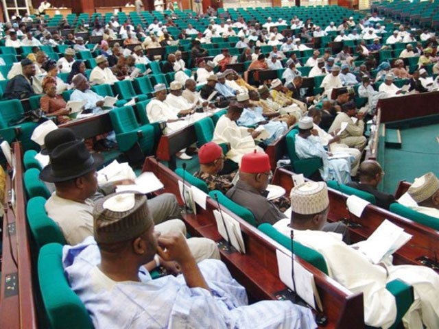 Rep speaks on bill to declare June 12 Democracy Day