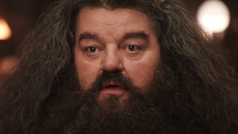 The real reason you don't hear from Hagrid anymore