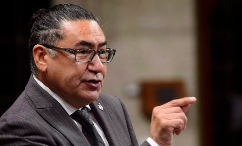 Métis leader says UNDRIP bill 'tainted' by 'potty-mouthed' NDP MP