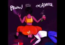 Shilexy Ft. Lambert - Amaka Can Do | @shilexy_dsk