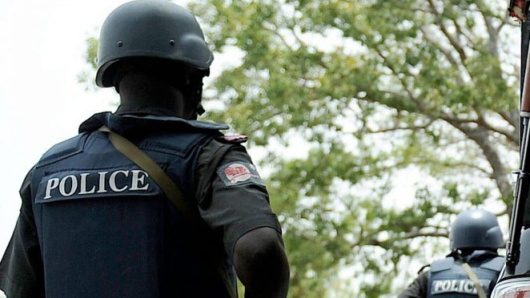 Nigeria news : Police arrest two kidnap suspects in Adamawa