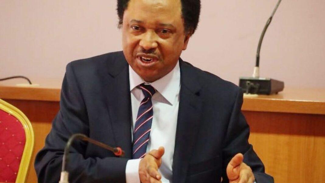Nigeria news : Shehu Sani reacts to re-introduction of toll gates by Buhari govt