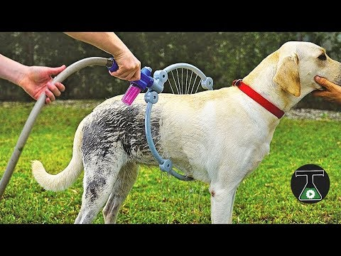 Video: 10 INSANE Pet Toys & Gadgets You Must Have