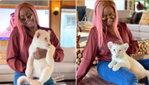 DJ Cuppy Flaunts with Her Baby Lion On Social Media