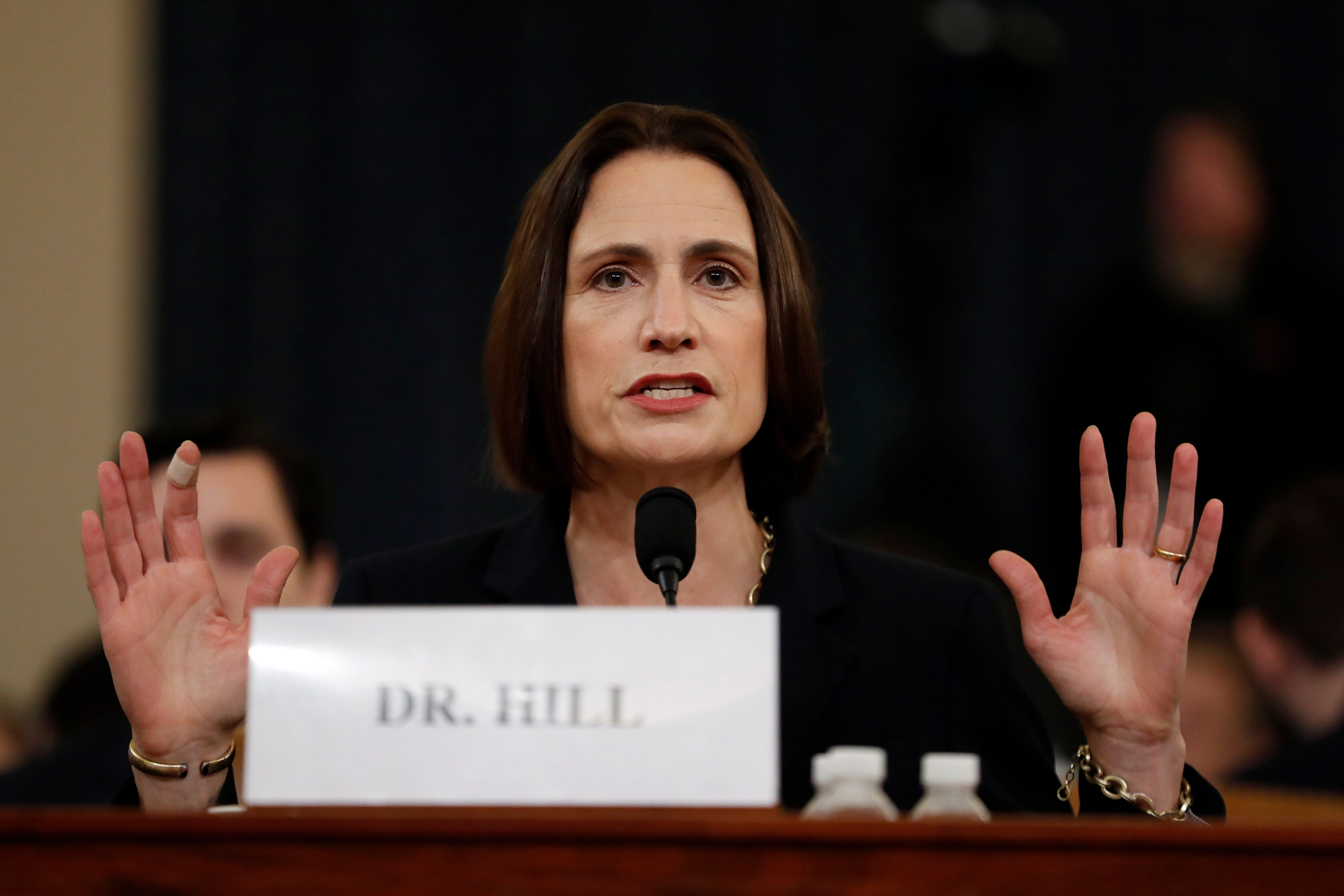 Fiona Hill Shoots Down GOP Conspiracy Theories, Says 'Our Nation Is Being Torn Apart'