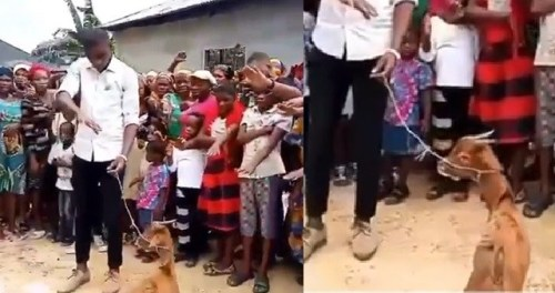 Nigerian Pastor Leads Members In Prayers Using A Goat As A Point Of Contact (Watch Video)
