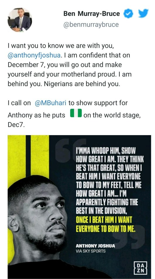 """""""We Are With You"""" – Senator, Ben Bruce Calls On President Buhari To Show Support To Anthony Joshua Ahead Of His Rematch With Ruiz"""