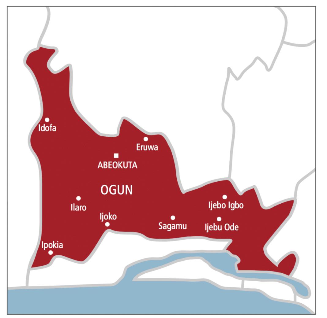Nigeria news: Two Lagos returnees test positive for COVID-19 at Ogun FMC