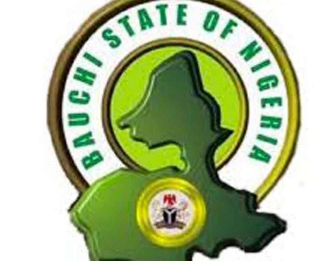 Nigeria news : N-Power: Bauchi lawmaker condemns portal registration for rural dwellers