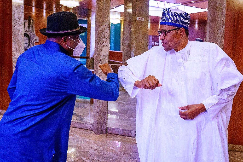 Goodluck Jonathan visits Buhari