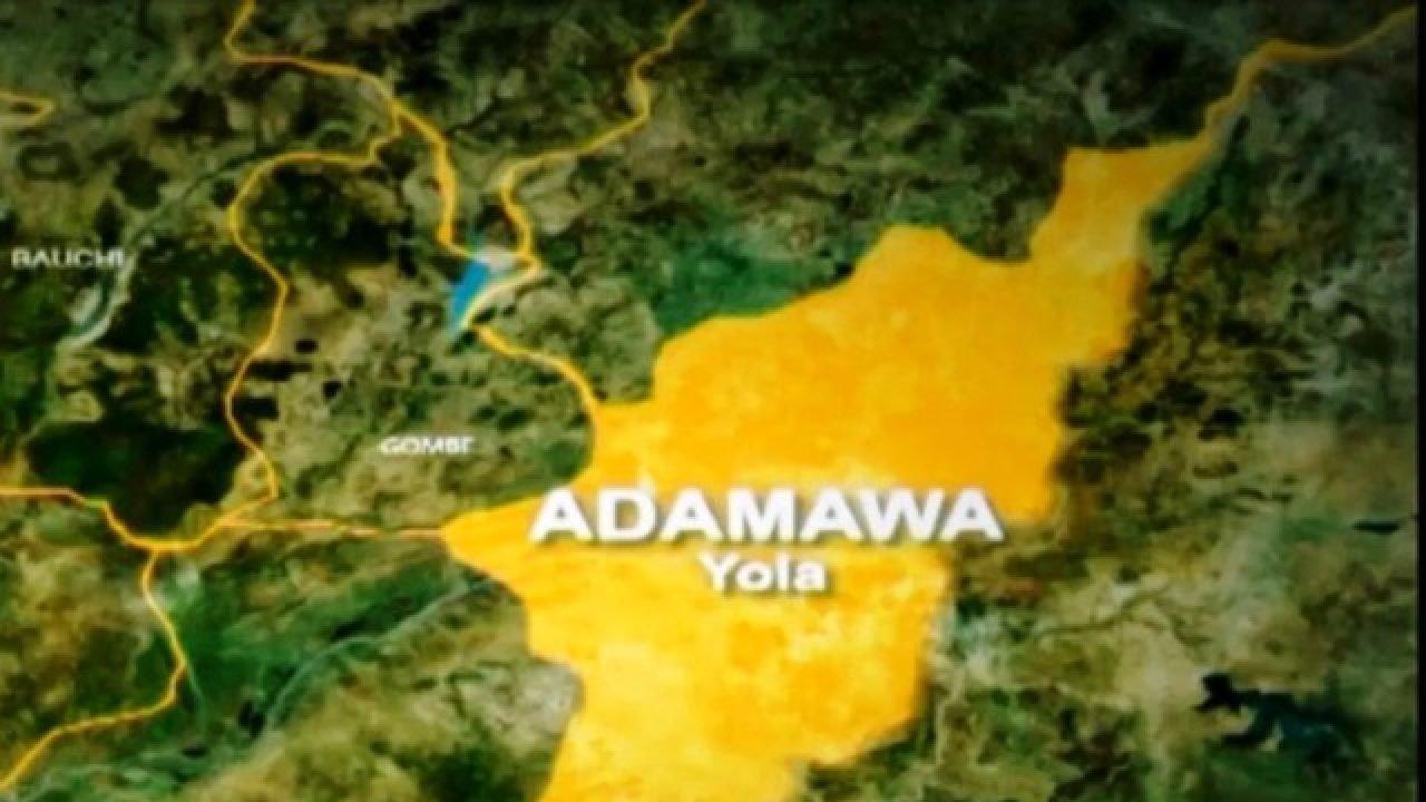 Nigeria news : Senator, others lament over abandoned Numan-Jalingo road in Adamawa