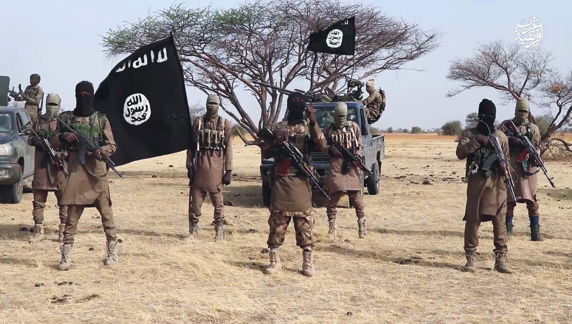 Nigeria news : Boko Haram: 6 killed, 11 abducted in Adamawa