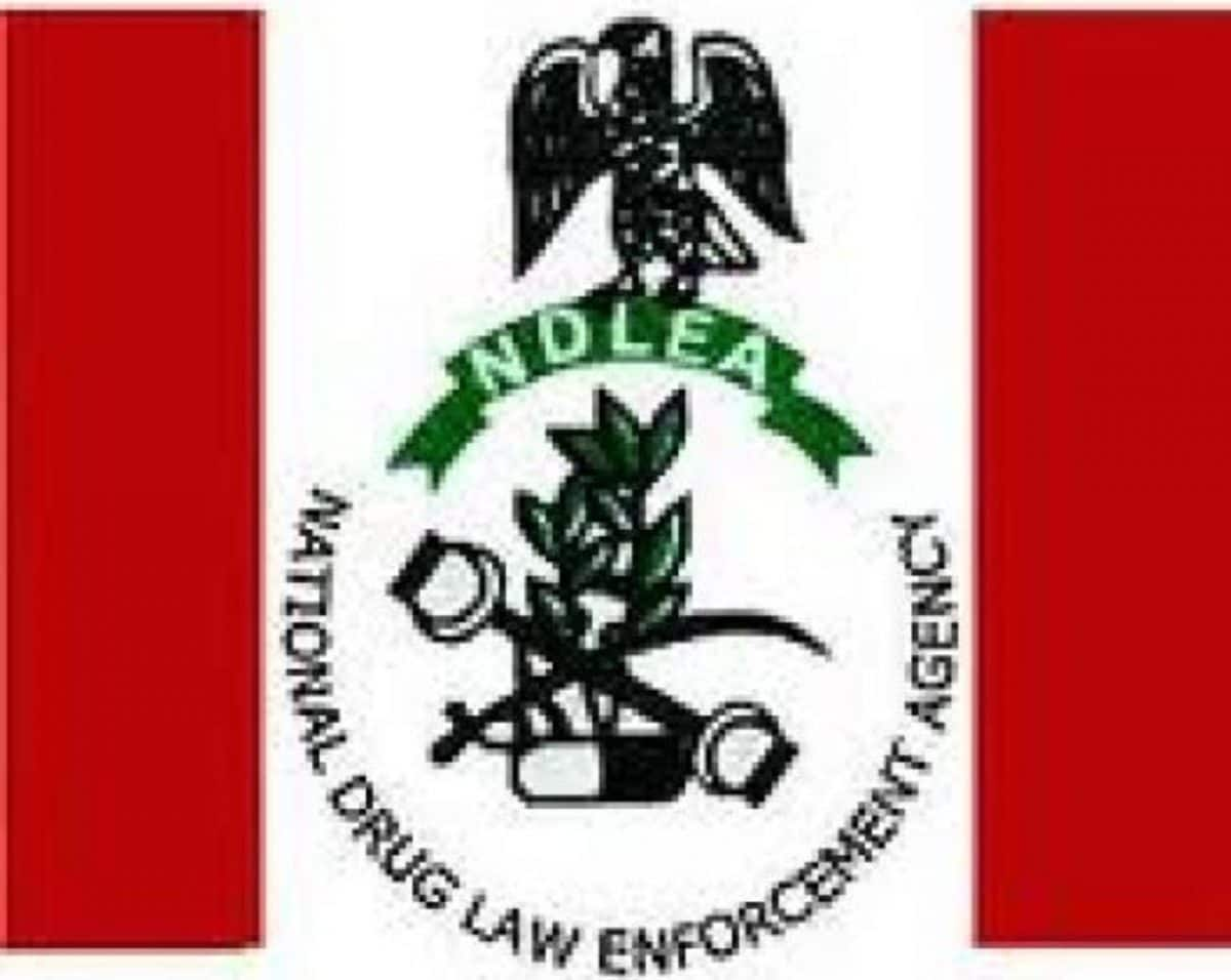 Nigeria news : Our chairman not sacked by Buhari – NDLEA
