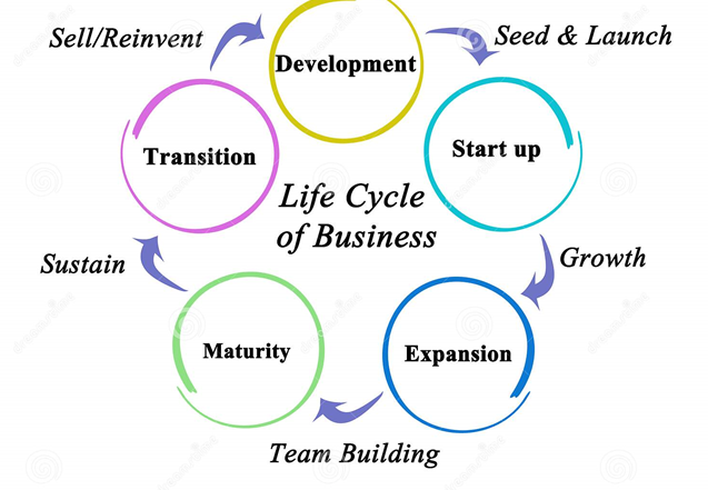 The Five Stages Of a Business: Which Phase Are You In?