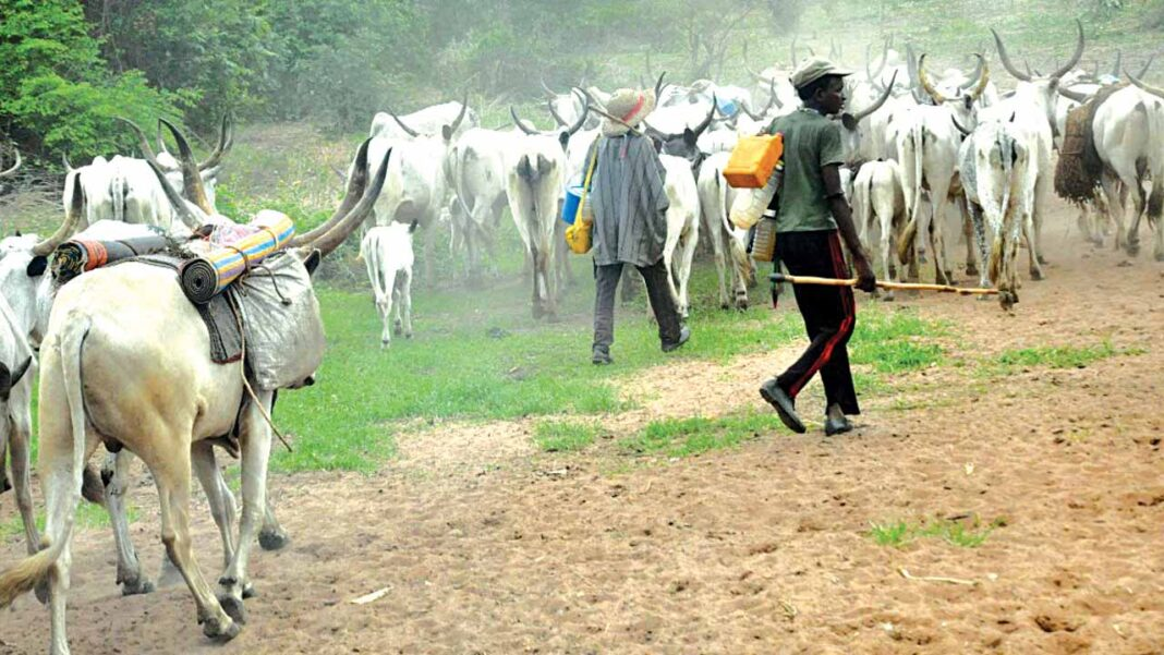Nigeria news : Eviction: We've started relocating to Kano – Fulani herdsmen