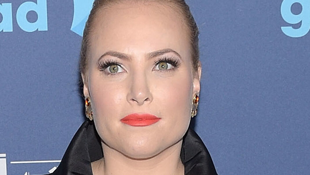 Why Meghan McCain Is Causing Such A Stir Over Dr. Fauci