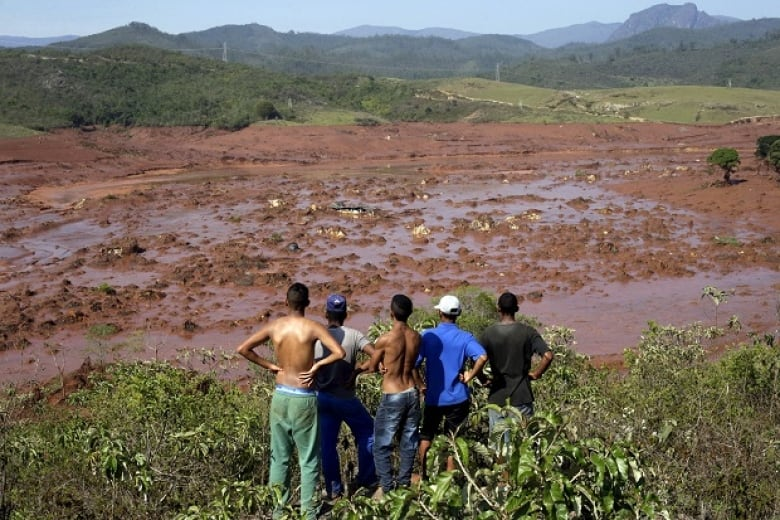 Canadian firm's proposed gold mine in Amazon rainforest a step closer to reality, CEO says