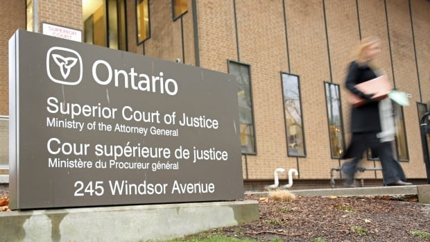 Windsor court ruling puts COVID-19 'hoax' belief at centre of custody fight