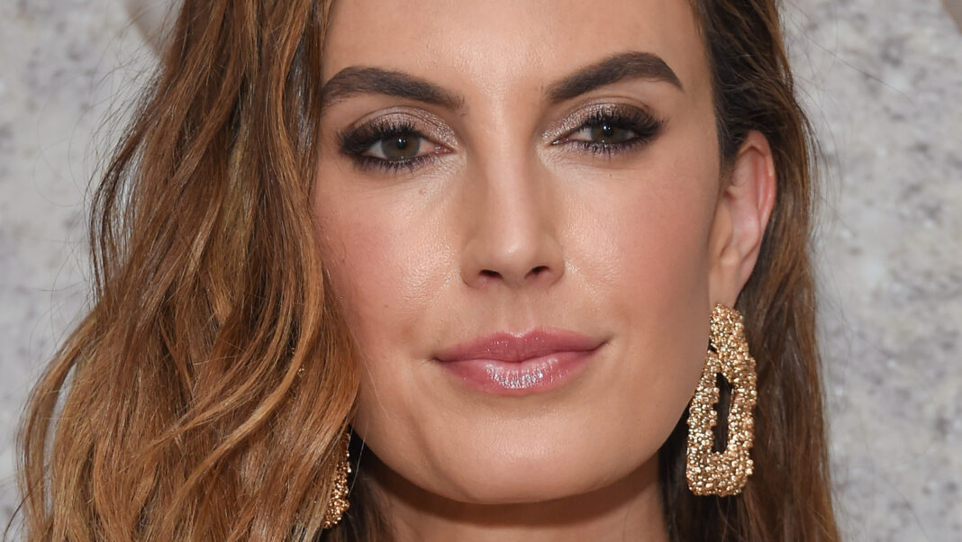 How Elizabeth Chambers Is Doing Throughout The Armie Hammer Drama