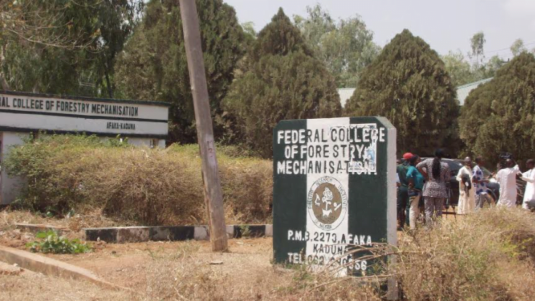 Some bandits are foreigners – Afaka student gives reason behind abduction