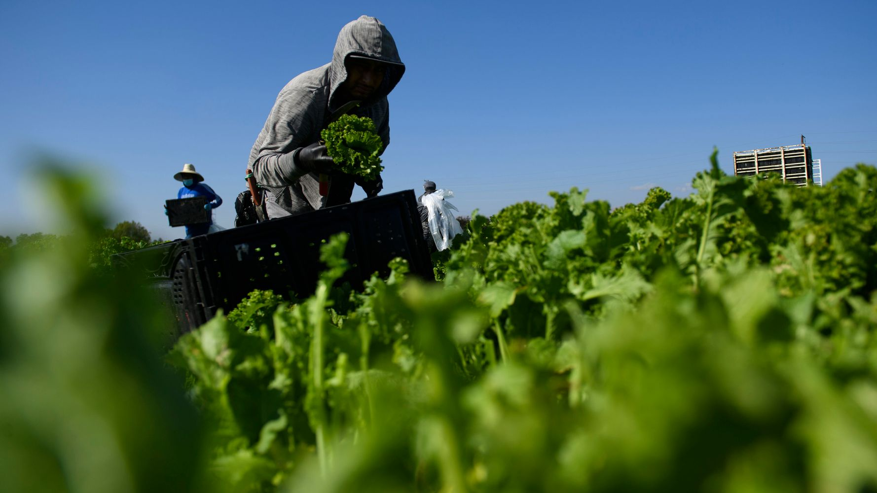 Supreme Court Backs Businesses Challenging California Labor Law