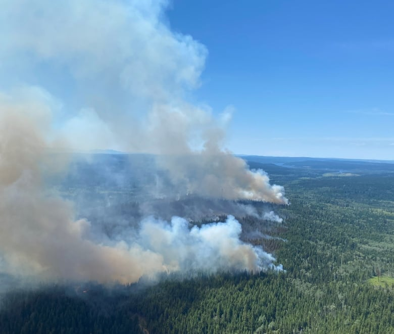 Crews battle more than 170 wildfires in B.C. as drying conditions continue