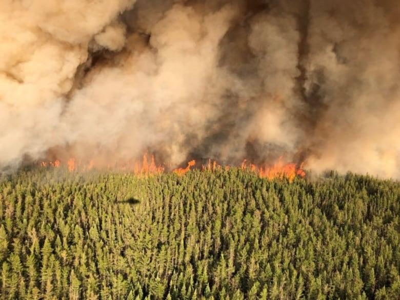 Forest firefighter dies after medical emergency in northwestern Ontario