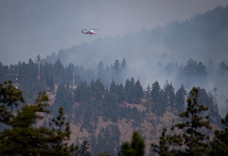 Smoke headed for Metro Vancouver, Stanley Park closed overnight as 241 wildfires burn across B.C.