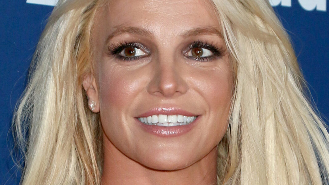 Britney Spears Makes A Strange Declaration About Her Happiness to the Public