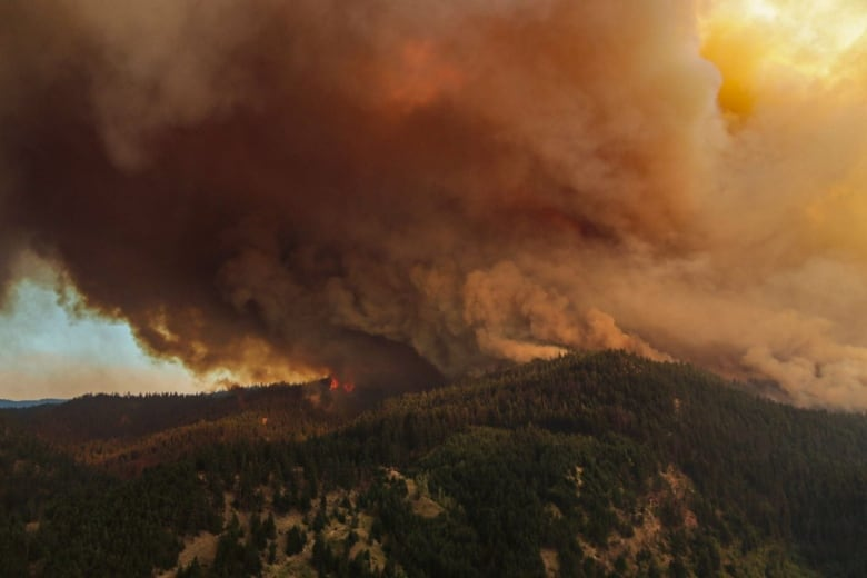 Soot, ash fall on parts of B.C. as strong winds fan wildfire flames