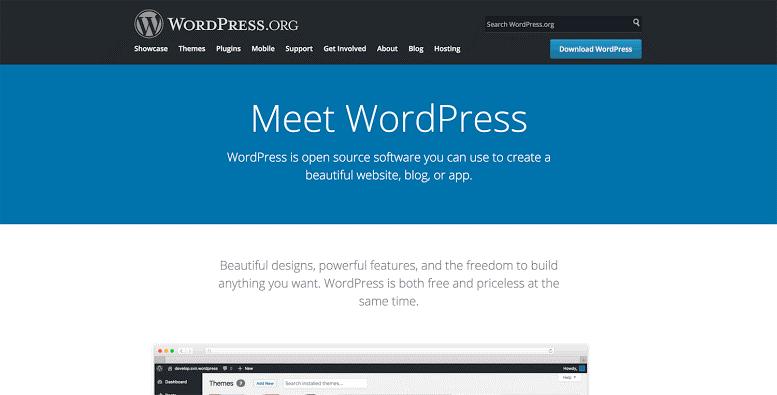Best Website Builders wordpress