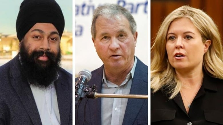 Liberals claim lone seat in Calgary's sea of blue, CBC News projects