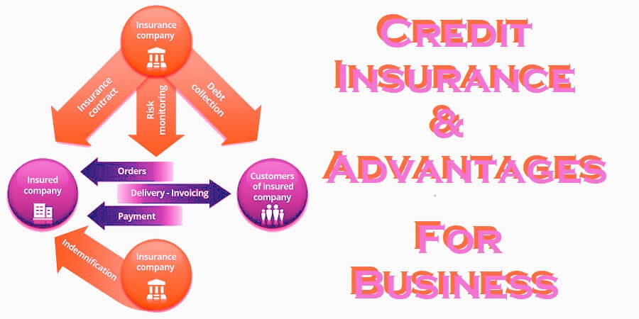 Business Credit Insurance